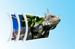 iguana-ii
